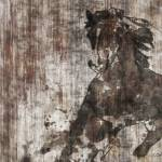 """""""Running Horse 7"""" by Aneri"""