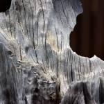 """""""Driftwood Abstract 2016"""" by KsWorldArt"""