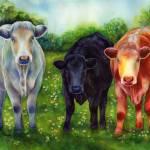 """Three Amigos"" by HaileyWatermedia"