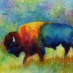 """American Buffalo 3"" by HaileyWatermedia"