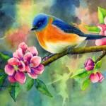 """Eastern Bluebird"" by HaileyWatermedia"