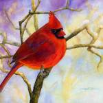 """Northern Cardinal"" by HaileyWatermedia"