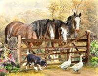 Featherwell Clydesdale Farm