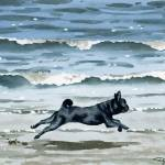 """Black Pug At The Beach"" by k9artgallery"