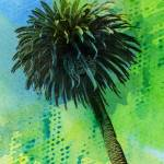"""ORL-2043-1 Palm tree tropical"" by Aneri"