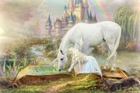 Fairytales and Unicorns