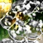 """""""Green and Gold Bubbles"""" by SplitWindow"""