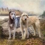 """Irish Wolfhounds"" by TrudiSimmonds"