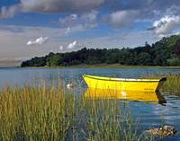 Yellow Rowboat in the Light