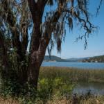 """Lake Hennessey"" by goatlockerguns"