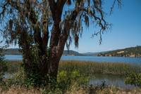 Lake Hennessey