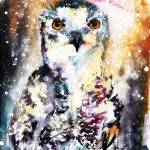 """Birds of Prey Snowy Owl Watercolor"" by GinetteCallaway"