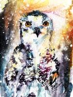 Birds of Prey Snowy Owl Watercolor
