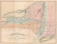 Vintage Agricultural Map of New York (1846)