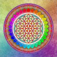 Flower Of Live - Rainbow Lotus Artwork 1