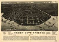 Vintage Green Cove Springs FL Pictorial Map (1885)