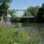 """Spring on the Erie Canal"" by dbwalton"