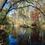 """Lamington River Fall Scenic, Tewksbury, Hunterdon"" by George_Oze"