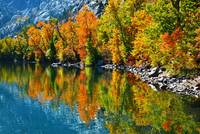 Autumns Beauty Reflected