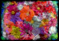 7f Abstract Floral Painting Digital Expressionism