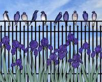 purple martins & purple irises