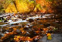 Fall Flow at McGee Creek