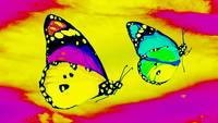 Abstract Butterfly Art 22