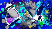 Abstract Butterfly Art 24