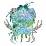 """Celestial Crustacean"" by sg-designs"