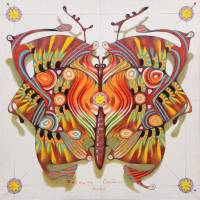 tribal butterfly Art Prints & Posters by federico cortese