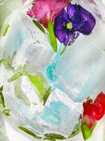 Ice and flowers