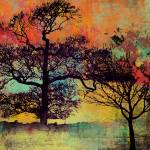 """ORL-2592-1 TREES On The COLORFUL HORIZON"" by Aneri"