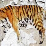 """ORL-3054-5 Siberian Tiger V"" by Aneri"