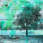 """ORL-4139-2 Shade Tree"" by Aneri"