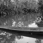 """""""2015-03-19 B&W River Boat in the Jungle"""" by rhamm"""