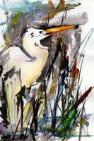 Birds Great Egret Expressive Watercolor