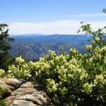 """Idaho Mountain Wilderness"" by joeyartist"