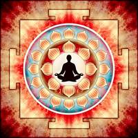 In Meditation - Yoga Lotus