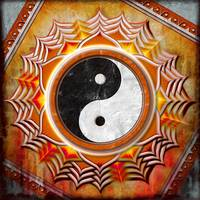Yin Yang - The Healing Of The Orange Chakra