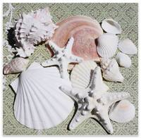 ORL-5222-2  Sea Shells Starfish Pastel Beach