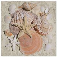ORL-5224-1 STARFISH SEA SHELL BEACH DECOR