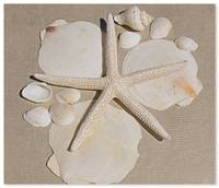 ORL-5248-1 Natural Shells. Beach decor II