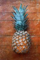 ORL-5288-1 Pineapple Country Style I