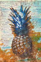 ORL-5287-2 Exotic Pineapple II