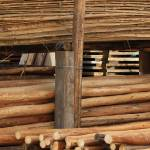 """""""Cut Logs in Cotacachi"""" by rhamm"""