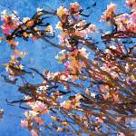 """ORL-5952 Spring Garden VI"" by Aneri"