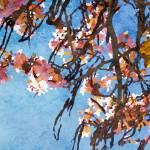 """""""ORL-5954 Spring Garden VIII"""" by Aneri"""