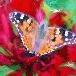 """""""flower and butterfly"""" by ArtbySachse"""