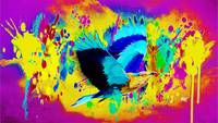 Abstract Bird Art 9