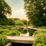 """The Native Garden"" by JessicaJenney"